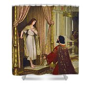 The King And The Beggar-maid Shower Curtain