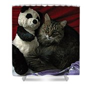 The King Kitty And Panda 01 Shower Curtain