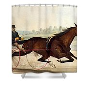 The King Of The Turf Shower Curtain by Currier And Ives