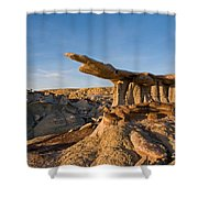 The King Of Wings 1 Shower Curtain