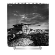 The King Of Wings Monochrome Shower Curtain