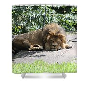 The King On His Day Off Shower Curtain