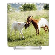 The Kiss Shower Curtain by Amy Tyler