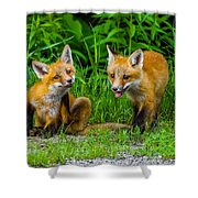 The Kits Shower Curtain