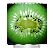 The Kiwi Experiment Shower Curtain