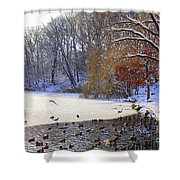 The Lake In Winter Shower Curtain