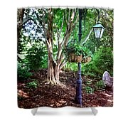 The Lamp Post Shower Curtain