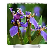 The Land Of Fairies Shower Curtain