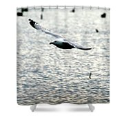 The Landing Shower Curtain