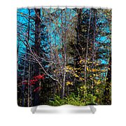 The Last Days Of Autumn Shower Curtain