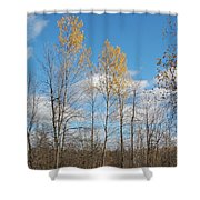 The Last Leaves Shower Curtain