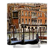 The Last Pigeon In Venice Shower Curtain