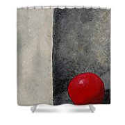 The Last Red Balloon Shower Curtain