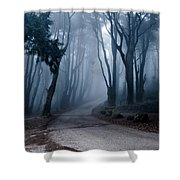 The Last Road Shower Curtain