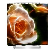 The Last Rose Of Summer Shower Curtain