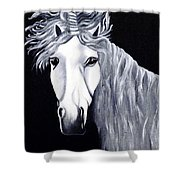 The Last Unicorn Shower Curtain