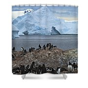 The Last Wilderness... Shower Curtain