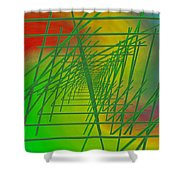 The Latticework 6 Shower Curtain