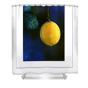 The Lemon Poster Shower Curtain