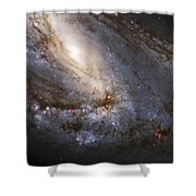 The Leo Triplet Shower Curtain