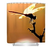 The Light Of Flight Upon The Mosquito Hawk At The Mississippi River In New Orleans Louisiana Shower Curtain