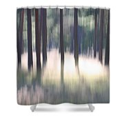 The Light Of The Forest Shower Curtain