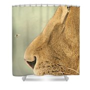 The Lion And The Fly Shower Curtain