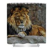 The Lion Digital Art Shower Curtain