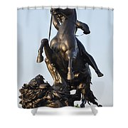 The Lion Fighter Shower Curtain by Bill Cannon