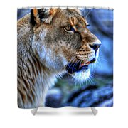 The Lioness Alert Shower Curtain