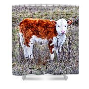 The Little Cow Shower Curtain