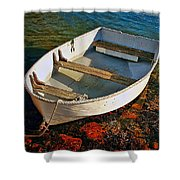 The Little Rowboat Shower Curtain