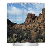 The Living Desert Of Arizona Shower Curtain