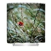 The Lonely Flower Shower Curtain