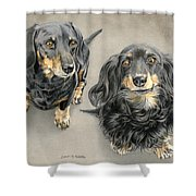 The Long And Short Of It Shower Curtain