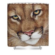The Look Cougar Shower Curtain