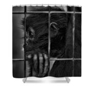 The Look Of Captivity Black And White Shower Curtain