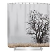 The Lookout Shower Curtain