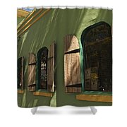 The Lost Parrot Shower Curtain