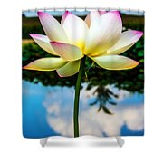 The Lotus Blossom Shower Curtain