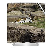 The Lounging Tiger 2 Shower Curtain
