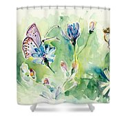 The Love Between Butterfly And Chicory Shower Curtain