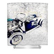 The Love Bug Shower Curtain
