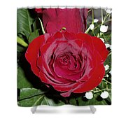 The Lovely Rose Shower Curtain