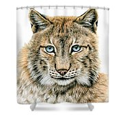 The Lynx Shower Curtain