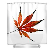 The Magical Colors Of Fall Shower Curtain