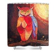 The Magical Mystical Owl Shower Curtain