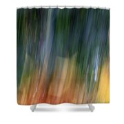 The Man In Yellow Suit Shower Curtain