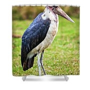 The Marabou Stork In Tanzania. Africa Shower Curtain