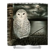 The Marsh At Night Shower Curtain